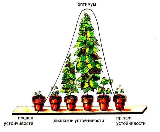 Схема действия экологических